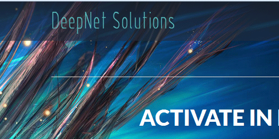 DeepNetSolutions: